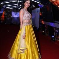 Rakul Preet Singh - Zee 10 years Celebrations Red Carpet Stills