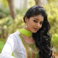 Sanam Shetty - Premikudu Movie Gallery   Picture 1086582