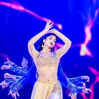Shriya Saran - SIIMA Awards 2015 Stills | Picture 1090927