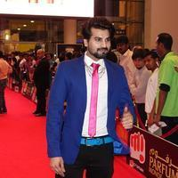 SIIMA Awards 2015 Red Carpet Photos | Picture 1090386