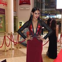 Sonal Chauhan - SIIMA Awards 2015 Red Carpet Photos | Picture 1090390