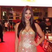 SIIMA Awards 2015 Red Carpet Photos | Picture 1090398