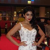 Shriya Saran - SIIMA Awards 2015 Red Carpet Photos