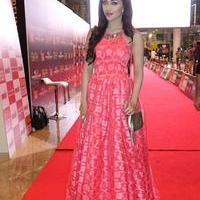 SIIMA Awards 2015 Red Carpet Photos | Picture 1090403