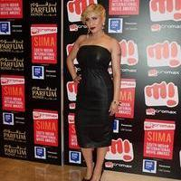 SIIMA Awards 2015 Red Carpet Photos | Picture 1090407