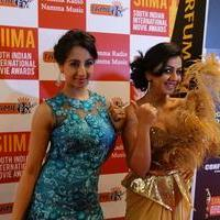 SIIMA Awards 2015 Red Carpet Photos | Picture 1090410