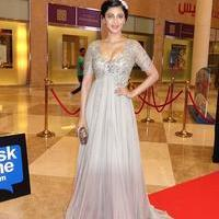 Shruti Haasan - SIIMA Awards 2015 Red Carpet Photos