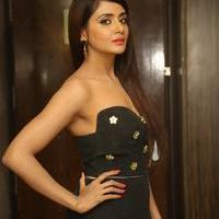 Parul Yadav at Upendra 2 Movie Audio Launch Stills | Picture 1092089