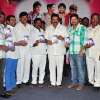 Simple Love Story Movie Audio Launch Function Stills | Picture 1093774