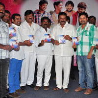 Simple Love Story Movie Audio Launch Function Stills | Picture 1093775