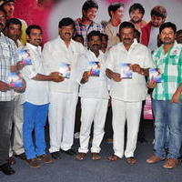 Simple Love Story Movie Audio Launch Function Stills | Picture 1093776