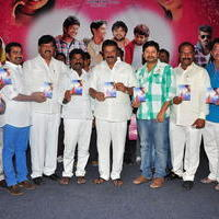 Simple Love Story Movie Audio Launch Function Stills | Picture 1093777