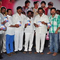 Simple Love Story Movie Audio Launch Function Stills | Picture 1093781