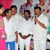 Simple Love Story Movie Audio Launch Function Stills | Picture 1093785
