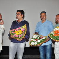 Simple Love Story Movie Audio Launch Function Stills | Picture 1093791
