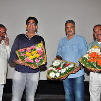 Simple Love Story Movie Audio Launch Function Stills | Picture 1093792