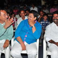 Simple Love Story Movie Audio Launch Function Stills | Picture 1093793