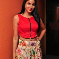 Lavanya Tripathi at Bhale Bhale Magadivoy Movie Song Launch at 93.5 Red FM Stills | Picture 1094221