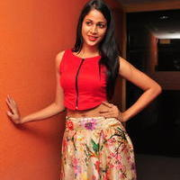 Lavanya Tripathi at Bhale Bhale Magadivoy Movie Song Launch at 93.5 Red FM Stills | Picture 1094237