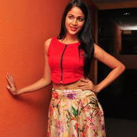 Lavanya Tripathi at Bhale Bhale Magadivoy Movie Song Launch at 93.5 Red FM Stills | Picture 1094238