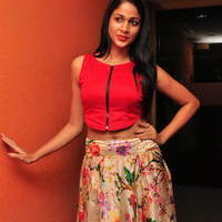Lavanya Tripathi at Bhale Bhale Magadivoy Movie Song Launch at 93.5 Red FM Stills | Picture 1094239
