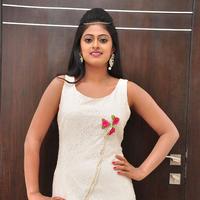 Megha Sri at Anaganaga Oka Chitram Movie Audio Launch Stills | Picture 1096620