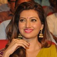 Hamsa Nandini - Soggade Chinni Nayana Movie Audio Launch Stills