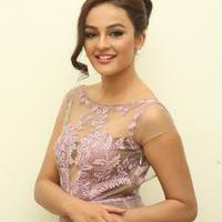 Seerat Kapoor at Tiger Movie Audio Launch Photos