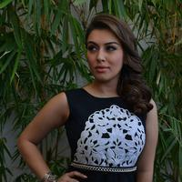 Hansika Motwani at Vishal at Maga Maharaju Movie Audio Launch Photos | Picture 929647