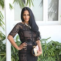 Sriya Reddy at Maga Maharaju Movie Audio Launch Photos | Picture 929543