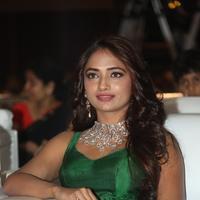 Jiya Shankar - Hyderabad Love Story Movie Audio Launch Stills | Picture 931266