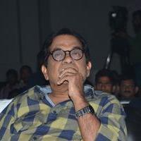 Brahmanandam - Bandipotu Movie Audio Launch Stills   Picture 935492