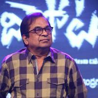 Brahmanandam - Bandipotu Movie Audio Launch Stills   Picture 935529
