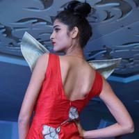 Tollywood Fashion Dreamz Fashion Show Stills