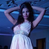 Tollywood Fashion Dreamz Fashion Show Stills