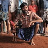 Dhanush - Pandem Kollu Movie Gallery | Picture 939845
