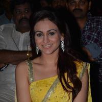 Aksha Pardasany - Dr Saleem Movie Audio Launch Stills | Picture 943532