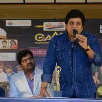 Ali - GAMA Awards Press Meet Photos   Picture 943973