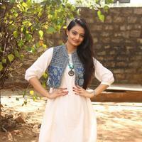 Nikitha Narayan at Ladies and Gentlemen Platinum Disc Function Photos   Picture 945179
