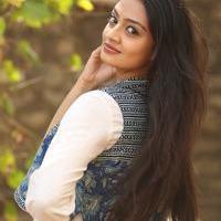 Nikitha Narayan at Ladies and Gentlemen Platinum Disc Function Photos   Picture 945184