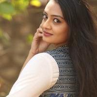 Nikitha Narayan at Ladies and Gentlemen Platinum Disc Function Photos   Picture 945188