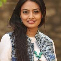 Nikitha Narayan at Ladies and Gentlemen Platinum Disc Function Photos   Picture 945197