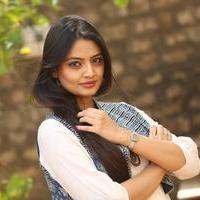 Nikitha Narayan at Ladies and Gentlemen Platinum Disc Function Photos   Picture 945199