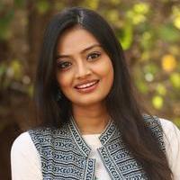 Nikitha Narayan at Ladies and Gentlemen Platinum Disc Function Photos   Picture 945200