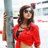 Vithika Sheru - Paddanandi Premalo Mari Movie Photos | Picture 945961