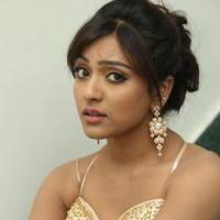 Vithika Sheru at Paddanandi Premalo Mari Audio Launch Photos | Picture 946359
