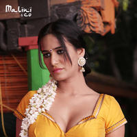 Poonam Pandey - Malini and Co Movie Stills