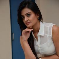 Nikitha Narayan at Ladies and Gentlemen Press Meet Photos | Picture 950013