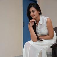 Nikitha Narayan at Ladies and Gentlemen Press Meet Photos | Picture 950014