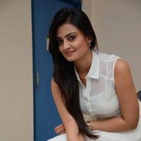 Nikitha Narayan at Ladies and Gentlemen Press Meet Photos | Picture 950015